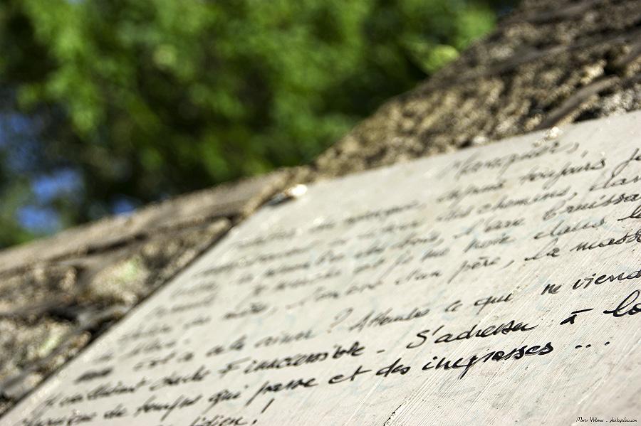 poesie taguée sur un mur : annonce d'amour urbaine