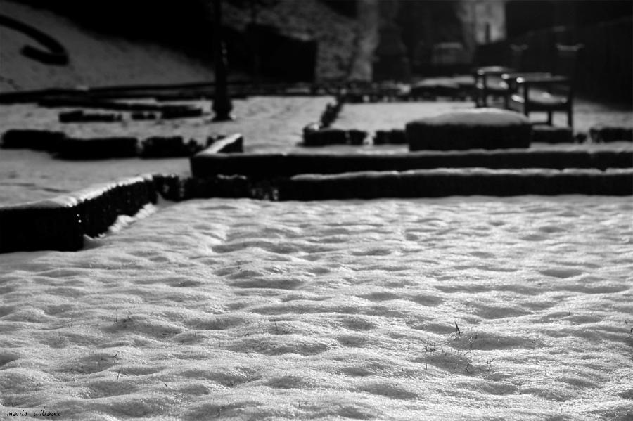 Jardin public sans public