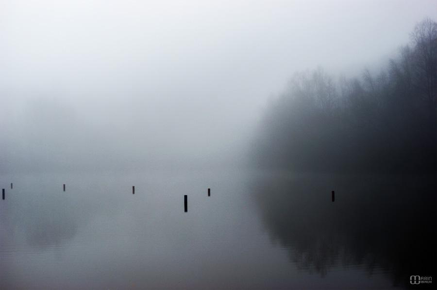 Brouillard sur étang