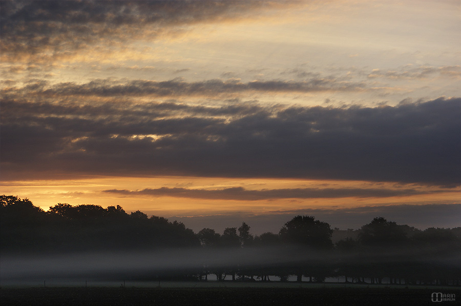Lever de soleil sur voile de brume