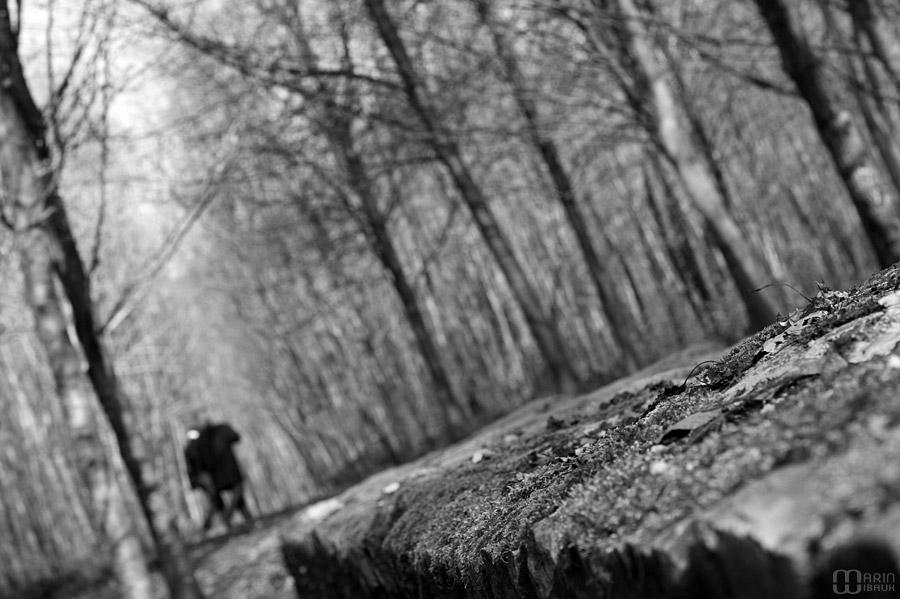 Balade du couple en forêt