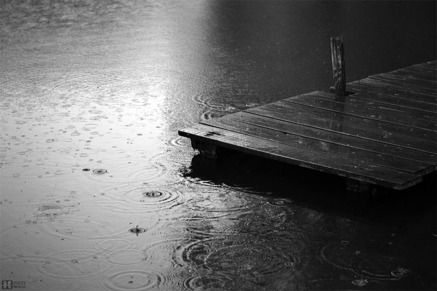 Pluie sur étang