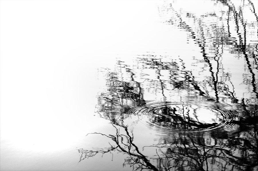 Reflet et ondulation de l'eau