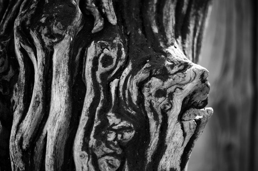 Détail d'un brise-lame de Saint-Malo