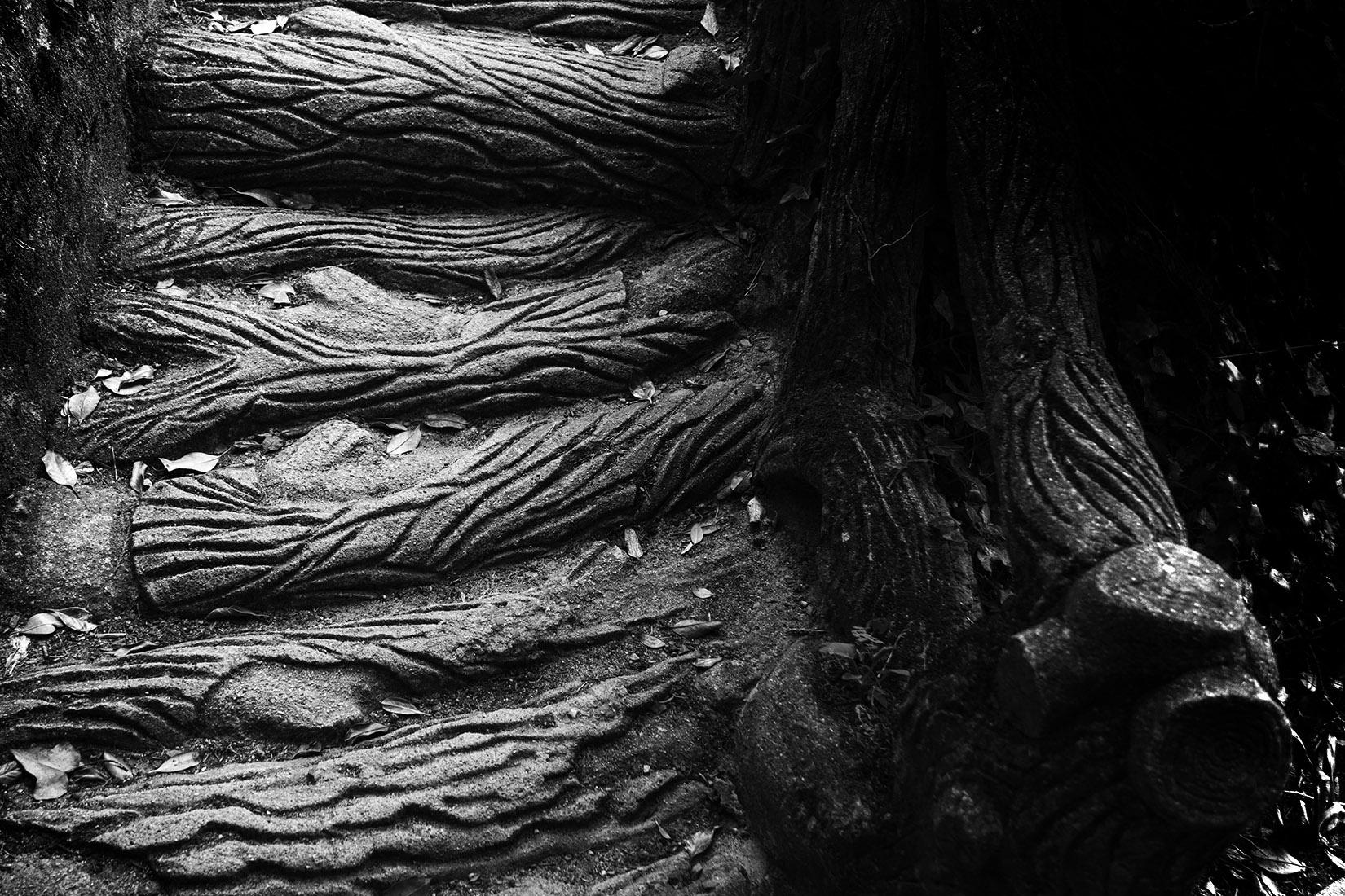 Rusticage : escalier de ciment imitation bois | photo poésie