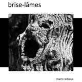 couverture de brise-lâmes : recueil de contes, photo et poésie de marin wibaux