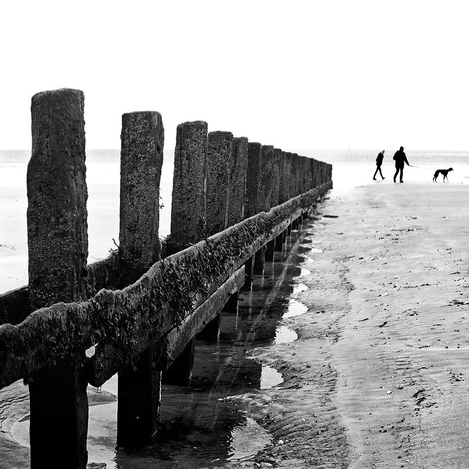 Couple de promeneurs avec leur chien sur une plage au delà des brise-lames