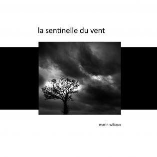 La sentinelle du vent - recueil de poésie et photo noir et blanc