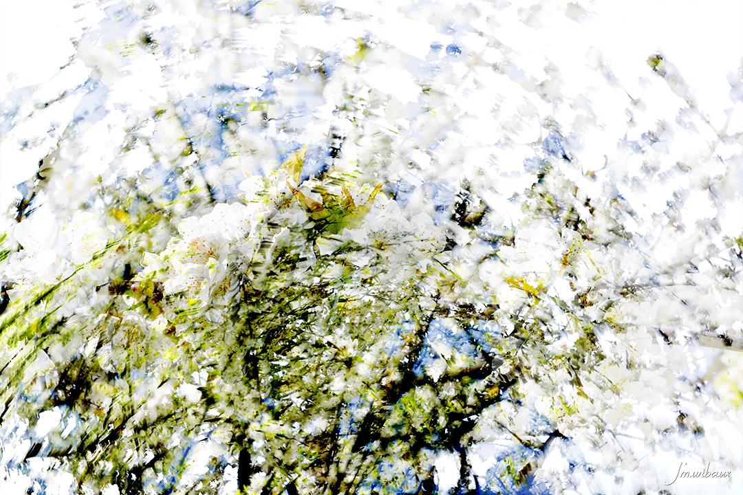 Tableau de printemps : fleurs et branches de cerisier et prunier